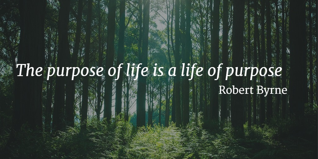 Quote... The purpose of life is a life of purpose. - Robert Byrne